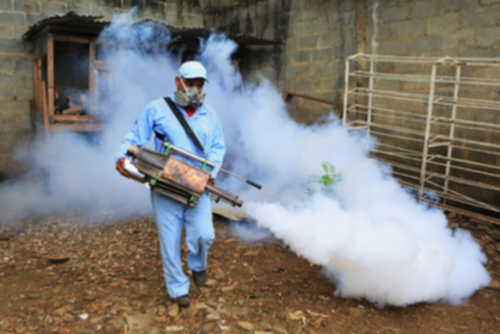Élimination des gîtes de moustique tigre
