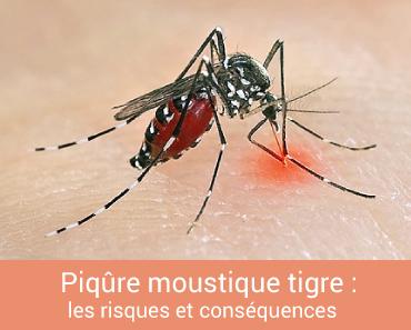 Piqûre moustique tigre, les risques et conséquences